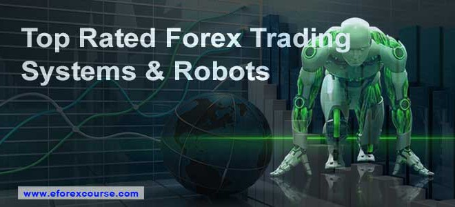Top 10 forex brokers