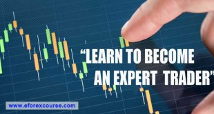 Learn Forex Trading Training Course For Beginners