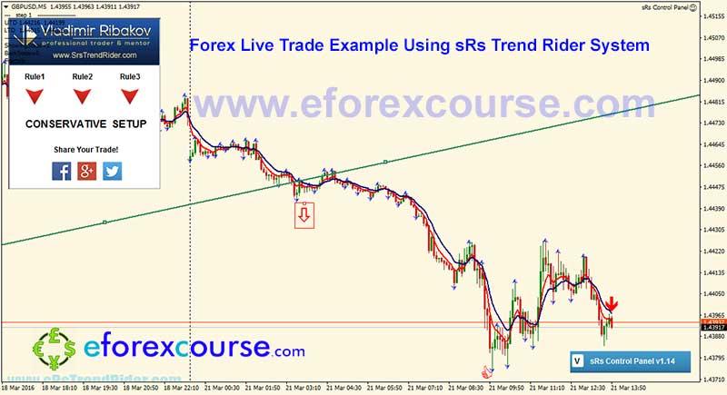 Trend rider 3 forex