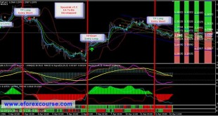 How Forex Scalping and Automated Trading Systems Work?