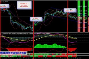 Forex megadroid robot cracks