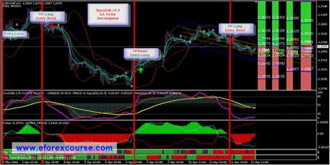 Robot scalping forex