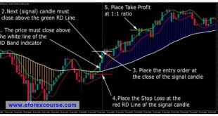 Rapid Dollar Forex Trading System