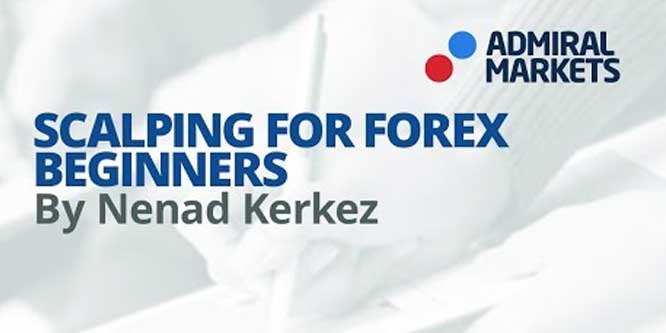 The Right Way to Scalp Forex Market for Beginners