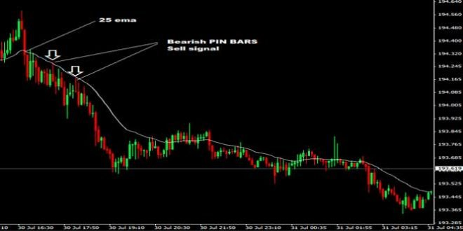 20 pips forex trading