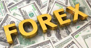 ما هو الفوركس؟ كيف يمكن الربح من الفوركس بدون راس مال؟