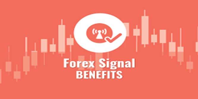 Do forex signals work