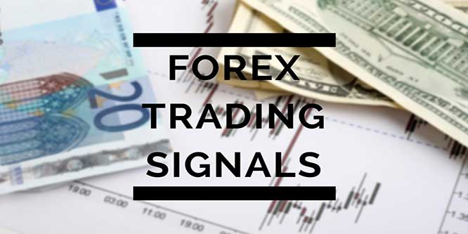 Live forex signals review