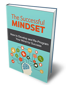 The Successful Mindset