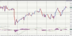 How to Make 200 Pips in the Forex in Less than 5 Minutes