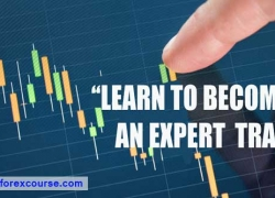 #1 Forex Training Course & Forex Mentor For Beginners