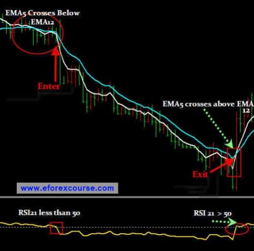 20 pips is how much money in forex trading форекс индикатор т 101