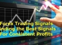 How To Find the Best Forex Signal Provider